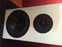 Buchardt Audio S300 MKII-img_1785.jpg