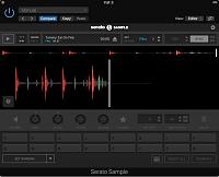 Serato Audio Research Sample-serato-sample-loaded.png