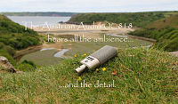 Austrian Audio OC818-oc818bay.png