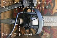 Austrian Audio OC818-oc818dualout.png