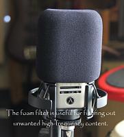Austrian Audio OC818-oc818foam.png