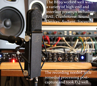 JZ Microphones BB29 Signature Series-preamps.png