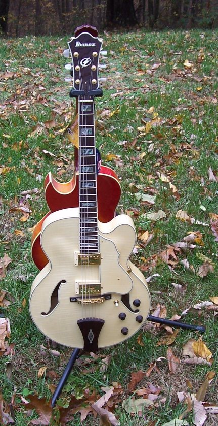 Guitar Pickups Vs Wood : laminated vs solid wood electric guitars ~ Russianpoet.info Haus und Dekorationen