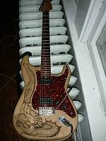 Amazing cheapo guitars-dscn3096.jpg