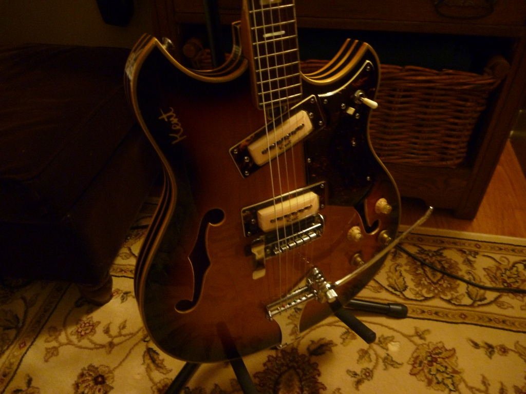 i always wanted this gibson guitar, just beautiful-p1020015 jpg