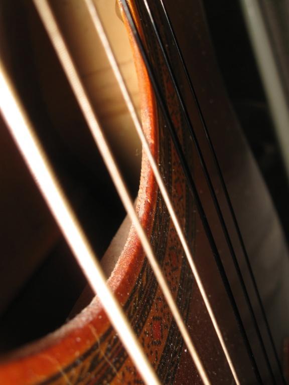 Solid Wood Vs Laminate Etc Guitars Gearslutz Pro Audio