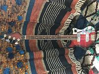 I Bet You Don't Know What Bass This Is!-img_3349.jpg