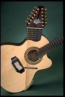 Make a guitar sound like a sitar-manzer-sitar.jpg