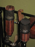 Sexy Mic??-wood-mics.jpg