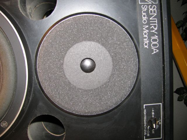 you can also order the tweeter foam parts from full compass  and they