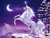 Assistant Positions-unicorn-magic-wallpaper.jpg