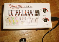 "Did anyone else record this ""instrument""?-raagini.jpg"