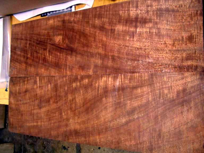 wood for building furniture
