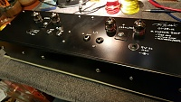 A Custom Wooly Mammoth Deluxe MkII -- Tube Edition-20160125_222156_resized.jpg