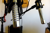 RM BIV Ribbon Microphones-biv.jpg