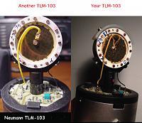 Old tlm 103 vs new tlm 103-c7ab03b5-664d-42d9-8282-45363d685dc7.jpeg