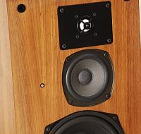 Which of these two monitors to choose? Dynaudio or high end 40yo German speaker?-bmdelta2.jpg