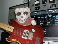 Gearslut Art-guitar1smaller.jpg