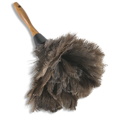 http://www.gearslutz.com/board/attachments/studio-building-acoustics/223324d1299281811-dusting-ostrich-feather-duster.jpg
