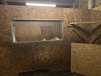 Recording and Mixing in a Wooden Stable-e3f082e0-af29-498b-9804-c5f0e58a1d36.jpg
