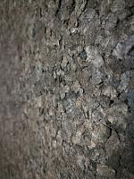 Looking to sound treat my drum recording room-cork-walls.jpg