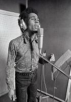 """So what IS the """"best"""" vocal mic?-1432cf642dec9db8b5a21961b37c9f75.jpg"""