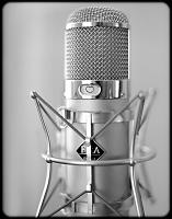 What's your favorite vocal mic that you currently own?-20170115-christmas-film-14-web-.jpg