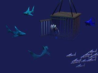 Interest for spec project-sharkcam.jpg