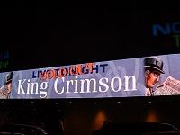 Tony Levin is a MONSTER.  King Crimson is a Monster Zoo-dscf0181.jpg