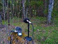 This track mixed without plugins, with live reverberation.-location-2.jpg